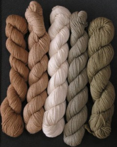 organic_cotton_colors