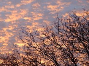 daybreak-239404_640